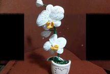 bloem11