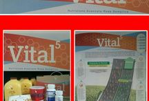 Prodotti a base di Aloe Vera Gel / Prodotti a base di Aloe vera Gel Barbadensis Miller