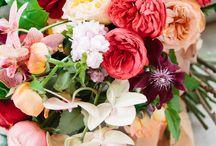 Pink, Burgundy, Peach| Haute Color / by A Good Affair Wedding & Event Production