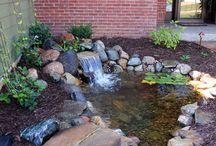 Pond DIY