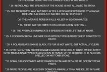 Useless facts / Strange worldly facts about anything