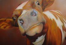 Animals- Farm Animals