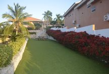 Some new and updated pictures of our resort! / Curinjo Holiday Resort Curacao, an impression