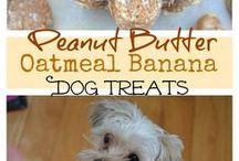 Pet Treats