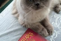 Books and Animals / Cats, dogs, birds & their books