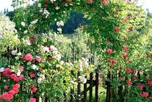 Schöner Garteneingang