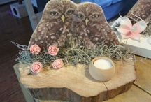 marijkes owls