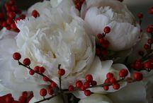 Flowers / by Dayna Doukara