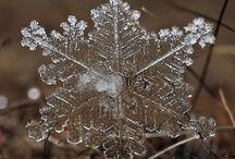 my snow flakes / by Christi Thomas
