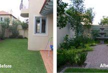My dream garden!!