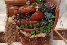 Jardin Dans Pot