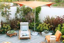 Backyard Lounge
