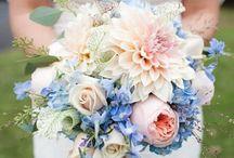 Rose Quartz & Serenity Color Crush