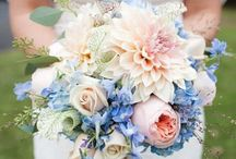 Rose Quartz & Serenity Color Crush / by Botanical PaperWorks