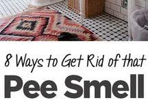 Urine Smells