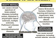 Brain Gut Link