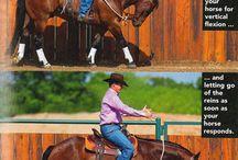 Horse training/riding