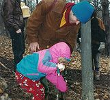 Maple Festival at Cayuga Nature Center / Mark your Calendars! The Annual Cayuga Nature Center Maple Festival is back this year, March 28th and 29th!