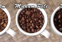 Coffee / Discover the most perfect cup of coffee grown in the U.S. / by Susan Jevens