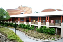 "Riverside Theatres / ""The Art Hub of Parramatta"" / by Riverside Theatres"