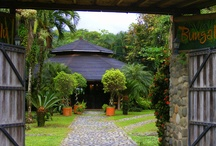 Costa Rica: Lodges, Camps, Hotels & Nature / Inspiration Costa Rica, interior design, nature and endemic animals