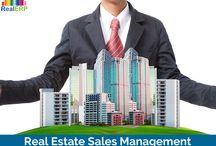 Real Estate Sales Management