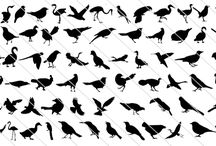 Birds Silhouette Vector / A huge collection of birds silhouette in vector format.  Some of the birds silhouette included in this collection are Sparrow, Swallow, hummingbird, dove, birds in flight, birds flying, cardinal, parrot, finch, parakeet, Swan, stork, and crow to name a few in this vast collection of birds vector illustration. This would be a best vector to create a naturalistic design.