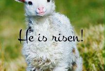 Kejty / He is risen!