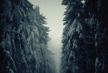 breathtaking / by Candace Lefke