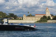 Chase Boats / Chase Boats provide the ultimate guest arrival experience, which one would select ?