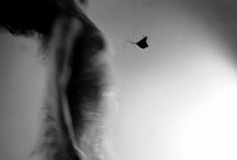 Susurrus......A whisper / by Desra Lea