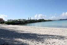 Vacation 2011 Bermuda
