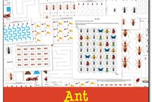 Bugs! / Homeschool resources and printables for any sort of bug or insect