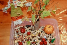 Fall....Sensory Bins & Small World Play