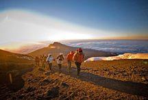 My Kilimanjaro challenge / 5 months to go