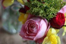 Flower arranging / Flower arranging