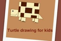 15 Turtle Facts