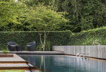 pool Becken