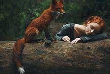 Dyr og mennesker