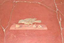 Oplontis / fresques de la villle romaine d'oplontis