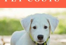 Fido's Financial Corner / We'll help you discover the cost of owning a four legged friend.