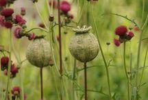 keramika v zahrade