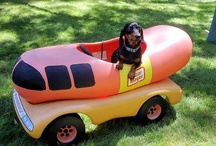 Spanky Dogs / by Leslie Rittenhouse