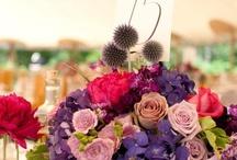 {Garden Wedding}
