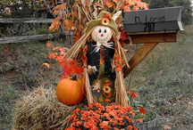 Fall decor / by Christina DeGrado Hogan