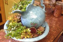 Teapots filled with plants on tray