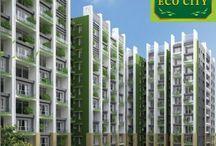 Dream EcoCity