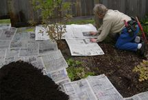 Gardening ideas / by Andrea Sievewright