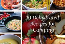 Dehydrator recipes / by Melini Dunican