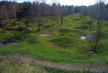 кратерный сад